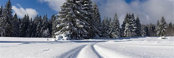 Langlaufloipe in Winterlandschaft